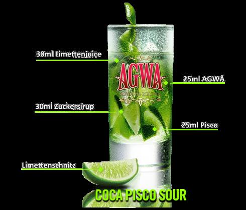 Coca Pisco Sour Cocktail 1